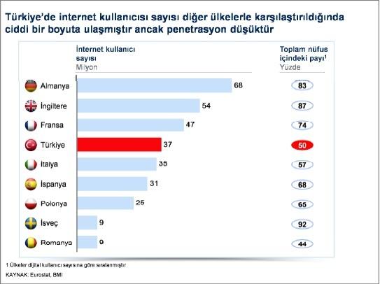 Türkiye İnternet Kullanıcı Sayısı